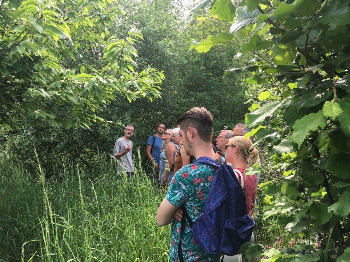 Vijf nieuwe voedselbossen in Brabant