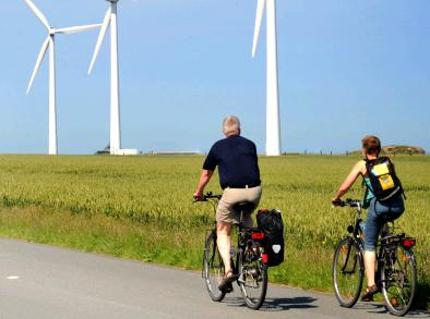 Checklist natuurbelangen bij Wind op land