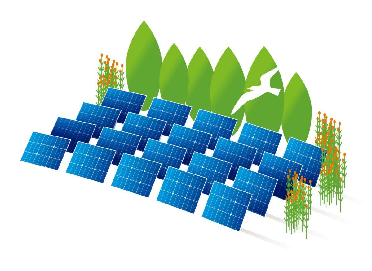 BNR Radio benieuwd naar Energietuinen