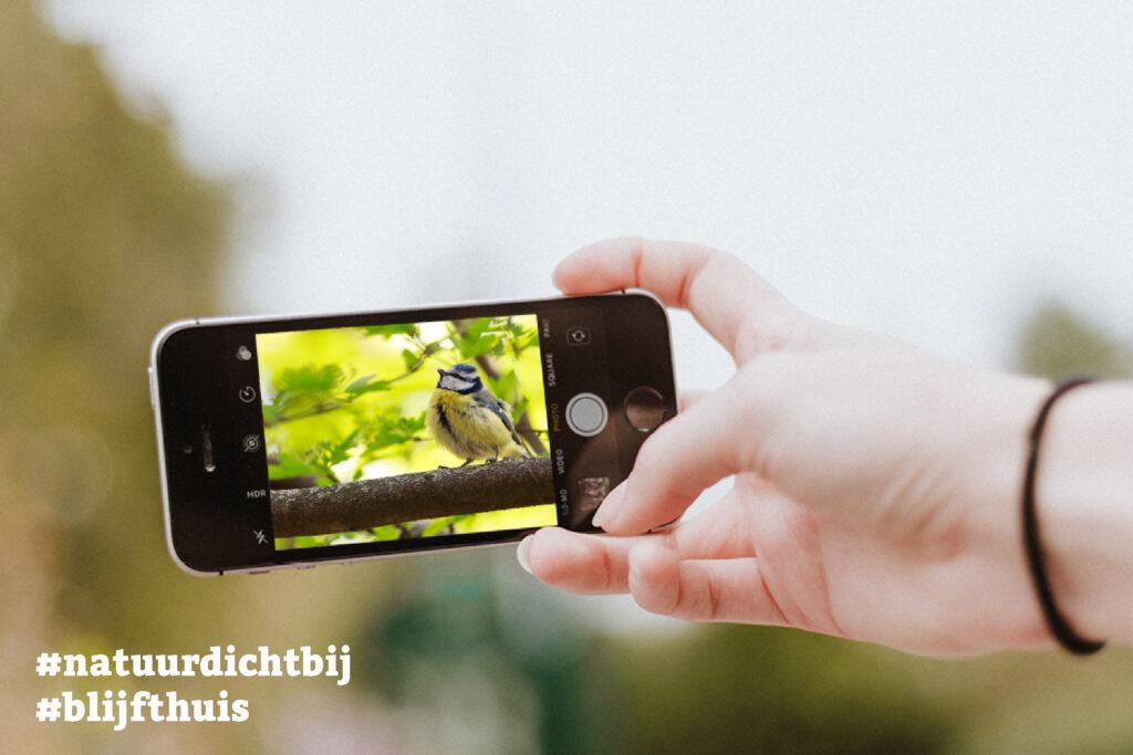 Doe mee met de #natuurdichtbij fotochallenge