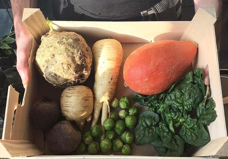 Oproep voor regeerakkoord met btw-verlaging groente & fruit en accijns frisdrank & vlees