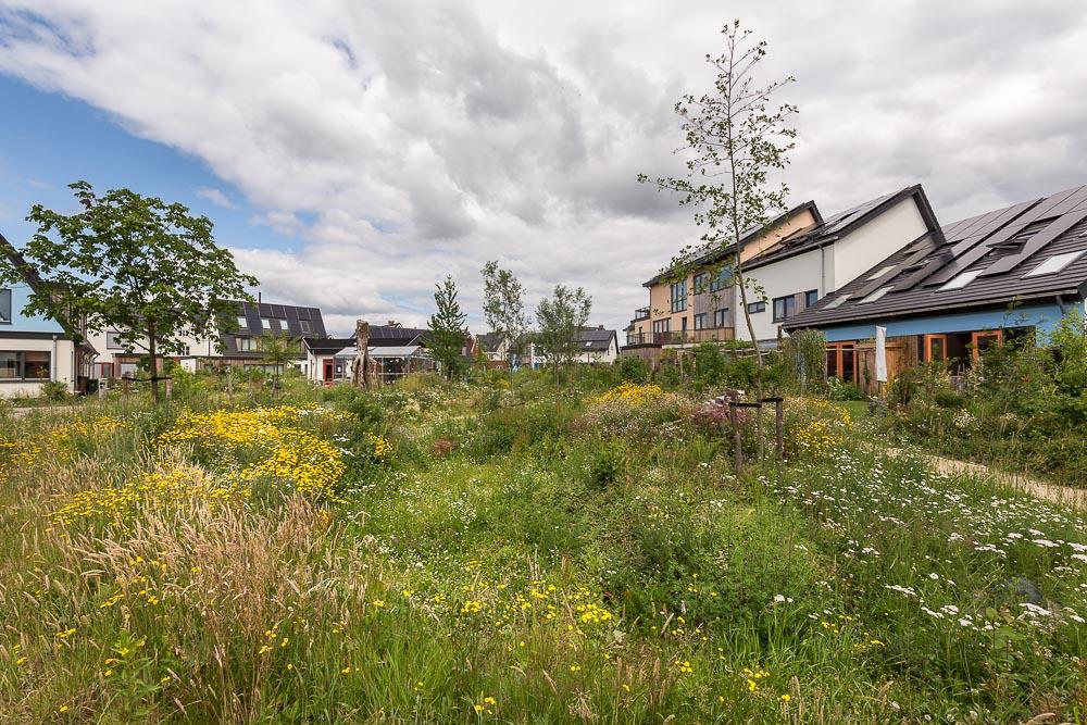 Bouw huizen die natuur-inclusief, circulair en klimaatbestending zijn