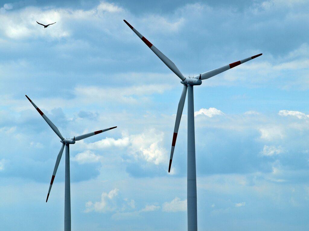 windturbines met vogel