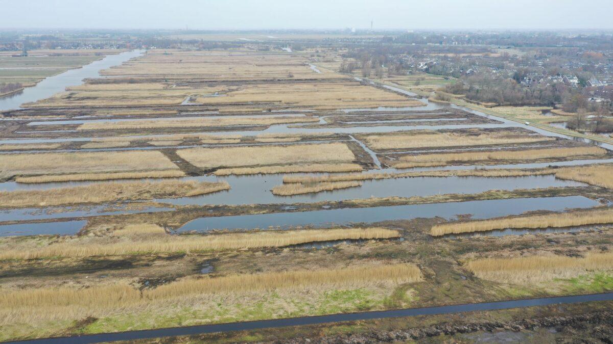 Peilverhoging natuurgebied Noord-Holland levert CO₂-certificaten op