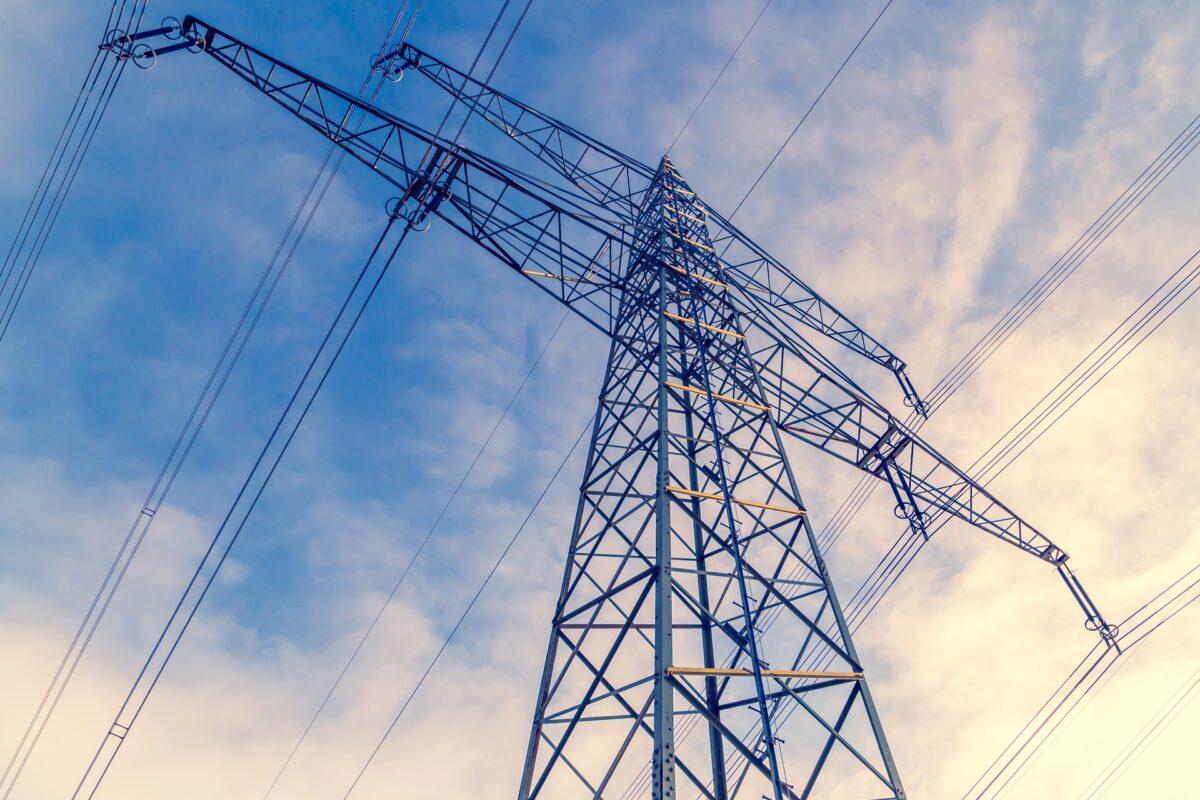 Natuur en Milieufederaties werken aan Natuurinclusieve Energietransitie Wind en Hoogspanning op Land
